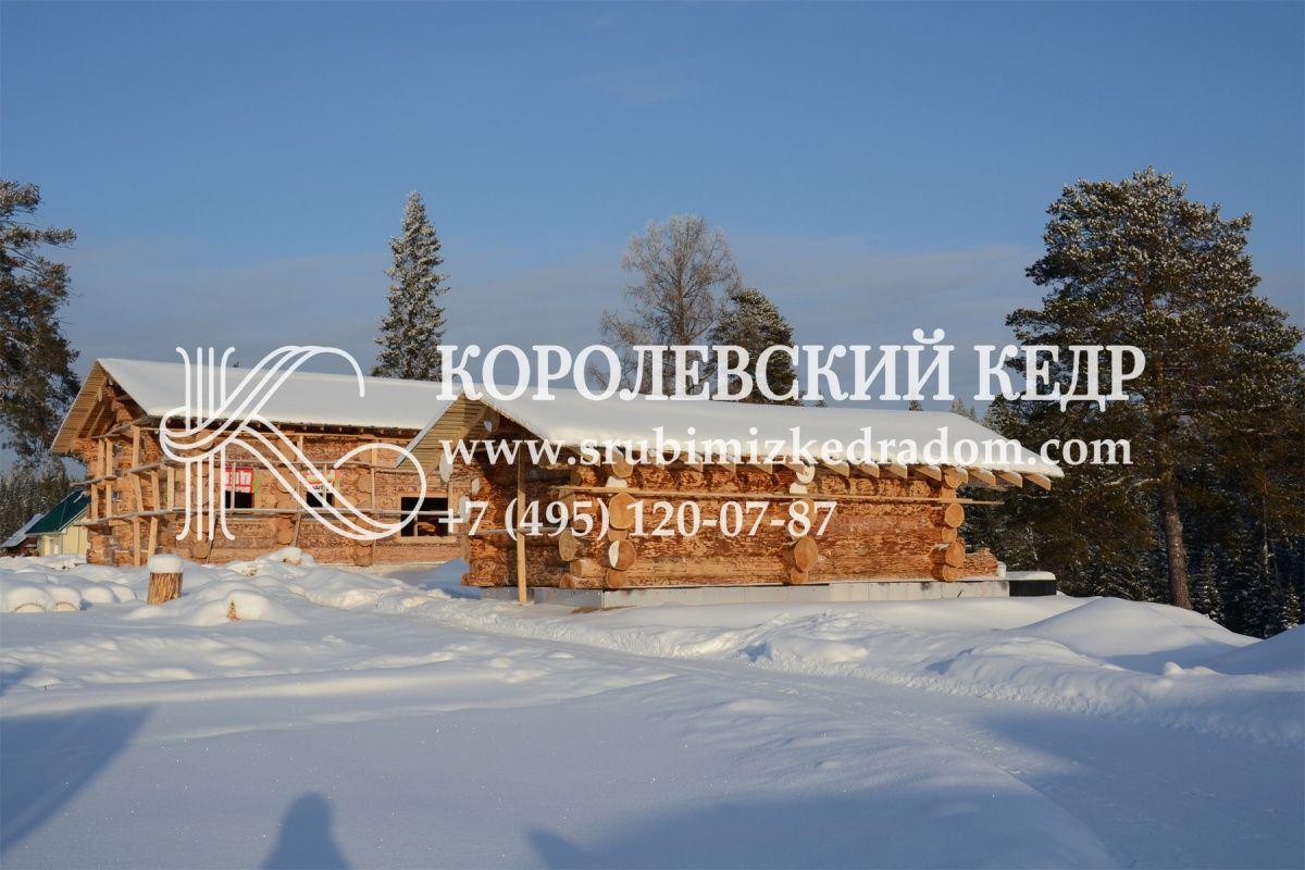 Дома от КОРОЛЕВСКОГО КЕДРА